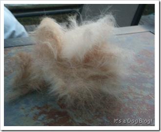 hair_furminator