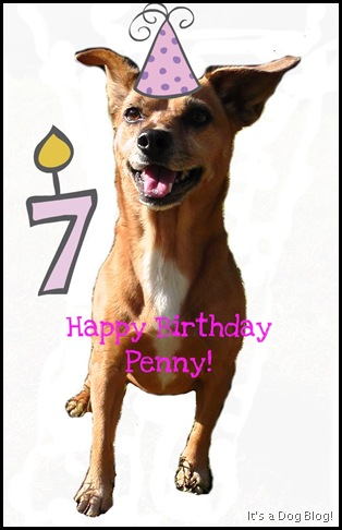 PennyBirthday7yo